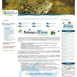 Réseaux Mares de Bourgogne