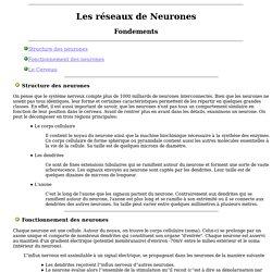 Les reseaux de neurones fondements