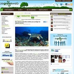 Des réserves naturelles mobiles pour protéger les espèces marines