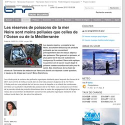 RADIO BULGARIE 19/03/13 Les réserves de poissons de la mer Noire sont moins polluées que celles de l'Océan ou de la Méditerranée