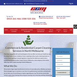 Commercial & Residential Carpet Steam Cleaning Services Avondale Height - 100% Satisfaction - Call Now