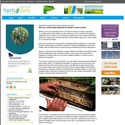 HORTIDAILY 10/03/13 New zero residue water treatment and biofilm control solution
