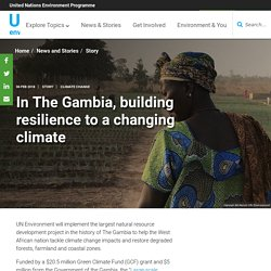 In The Gambia, building resilience to a changing climate