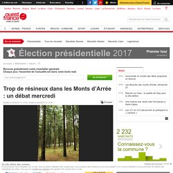 Trop de résineux dans les Monts d'Arrée : un débat mercredi