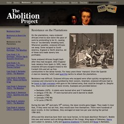 Resistance on the Plantations: The Abolition of Slavery Project