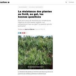Jardin de r gions froides ou temp r es pearltrees - Plante resistant au gel ...