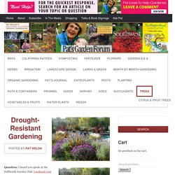 Drought-Resistant Gardening California locals Gardens Vermin Bees Yard And Also Garden The Golden State Natives Composting Organic Fertilizer Flowers
