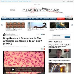 Drug-Resistant Gonorrhea: Is The Antibiotic Era Coming To An End?