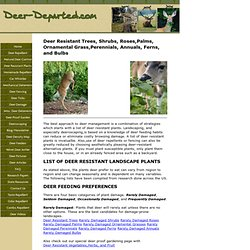 Lists of Deer Resistant Plants For A Deer Proof Landscape