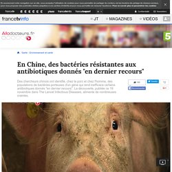 """En Chine, des bactéries résistantes aux antibiotiques donnés """"en dernier recours"""""""