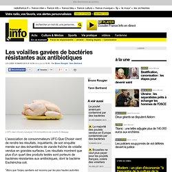 Les volailles gavées de bactéries résistantes aux antibiotiques