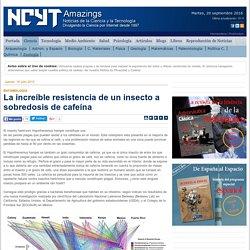 NOTICIAS DE LA SCIENCIA 16/07/15 La increíble resistencia de un insecto a sobredosis de cafeína