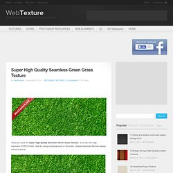 Super High Resolution Green Grass Texture
