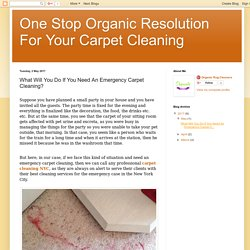 What Will You Do If You Need An Emergency Carpet Cleaning?