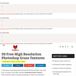 30 Free High Resolution Photoshop Grass Textures
