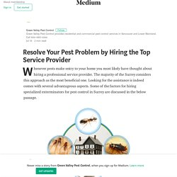 Resolve Your Pest Problem by Hiring the Top Service Provider