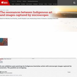 The resonances between Indigenous art and images captured by microscopes