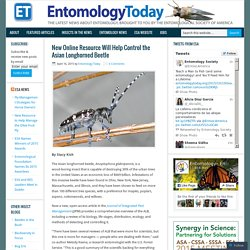 ENTOMOLOGY TODAY 16/04/15 New Online Resource Will Help Control the Asian Longhorned Beetle