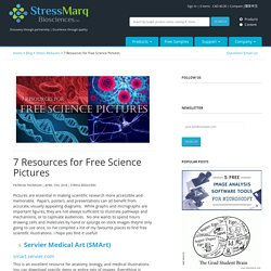 7 Resources for Free Science Pictures