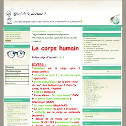 Corps humain respiration digestion respiration squelette mouvements corporels