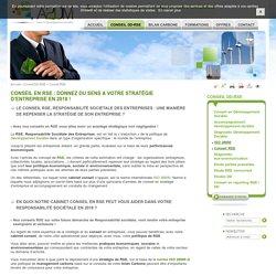 Conseil RSE, conseil en responsabilité sociale des entreprises