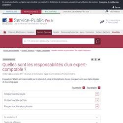 Quelles sont les responsabilités d'un expert-comptable? - professionnels