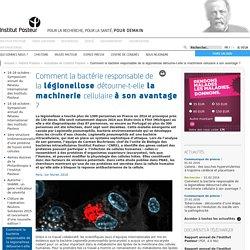 PASTEUR 01/02/16 Comment la bactérie responsable de la légionellose détourne-t-elle la machinerie cellulaire à son avantage ?