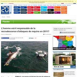 L'homme est-il responsable de la recrudescence d'attaques de requins en 2011?