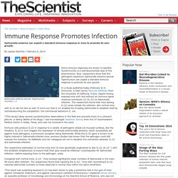 Immune Response Promotes Infection