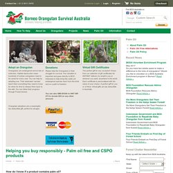 Helping you buy responsibly - Palm oil free alternatives
