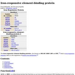 Iron-responsive element-binding protein