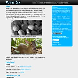 Hoverizr - A responsive jQuery Image manipulation and overlay plugin | Grayscale, Blur, Color Inversion