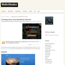 21 Responsive, Free WordPress Themes - Multy Shades