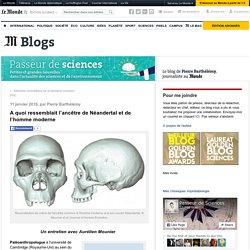 A quoi ressemblait l'ancêtre de Néandertal et de l'homme moderne