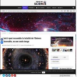 Voici à quoi ressemble la totalité de l'Univers observable, en une seule image