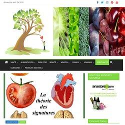 Les aliments qui ressemblent aux organes qu'ils guérissent !