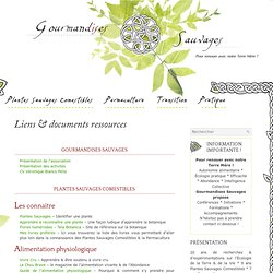 Liens & documents ressources