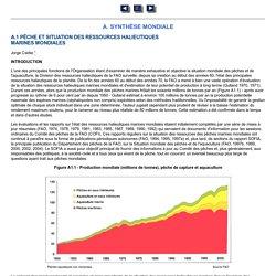 L'état des ressources halieutiques marines mondiales
