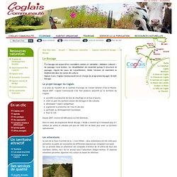Le programme de plantation bocagère - Espace rural - Environnement - Coglais communauté