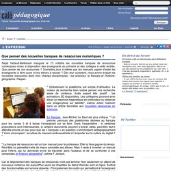 Que penser des nouvelles banques de ressources numériques ? (français, histoire-géo, sciences) (café pédagogique)