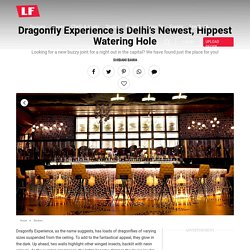Restaurant Review: Dragonfly Experience is Delhi's Newest Nightclub