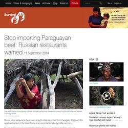 Stop importing Paraguayan beef: Russian restaurants warned
