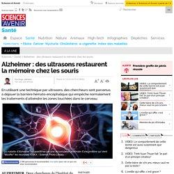 Alzheimer : des ultrasons restaurent la mémoire chez les souris