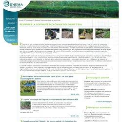 Restaurer l'hydromorphologie des cours d'eau