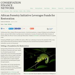 African Forestry Initiative Leverages Funds for Restoration