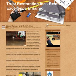 Trust Restoration Inc - Restoration Excellence Ensured: Water Damage and Disinfection