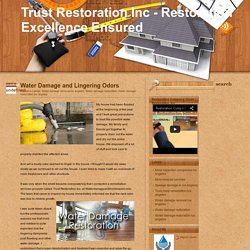 Trust Restoration Inc - Restoration Excellence Ensured: Water Damage and Lingering Odors