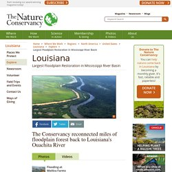 Largest Floodplain Restoration in Mississippi River Basin
