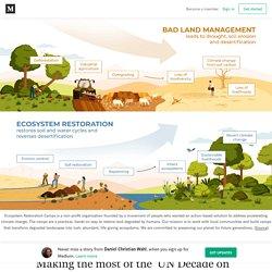 Making the most of the 'UN Decade on Ecosystems Restoration': bioregional regenerative development…