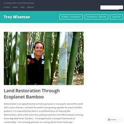 Land Restoration Through Ecoplanet Bamboo
